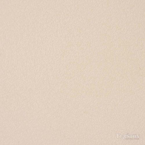 Antico Lime Plaster (VPC-3571B)